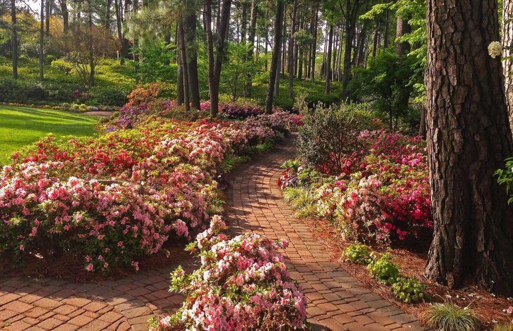 Pink-Brick-Path